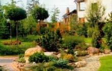 Выбираем растения для ландшафтного дизайна