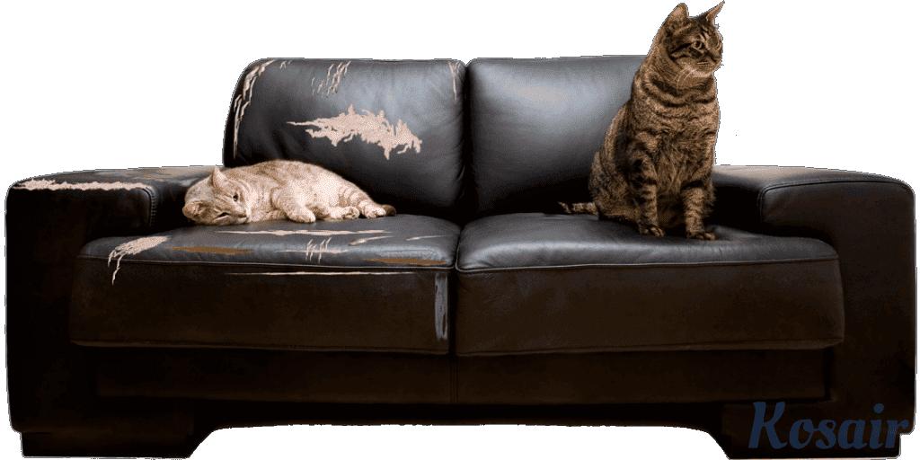 Ремонт и реставрация диванов